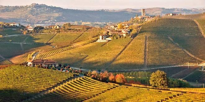 Nebbioli del Sud Piemonte: il Barbaresco